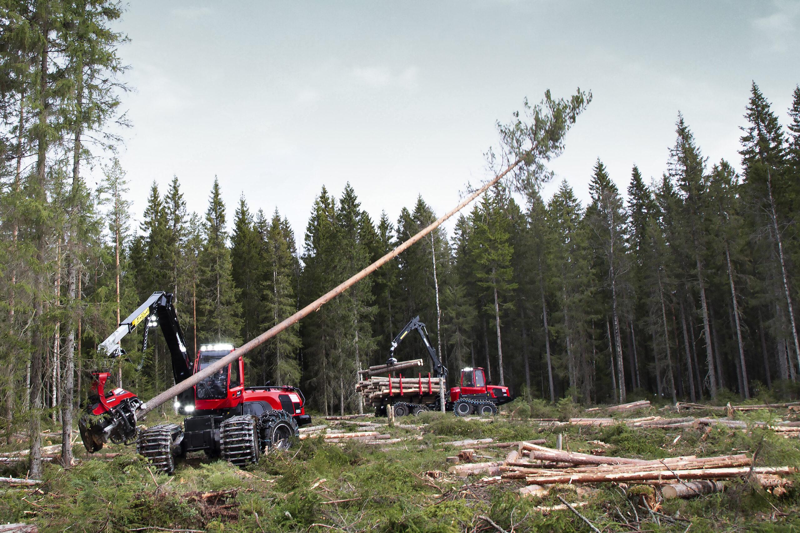 Skogsbranschen kraftsamlar för ökad jämställdhet